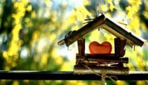 Как полюбить свой дом?