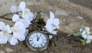 Минимализм и время